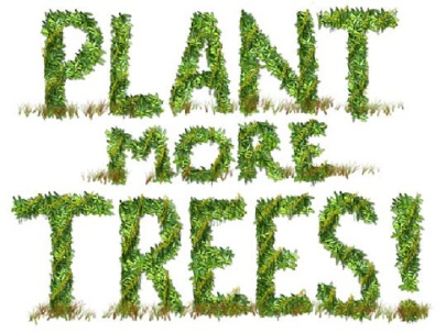 plant-trees_1_orig