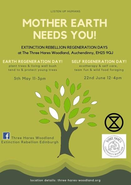 three hares earth regeneration